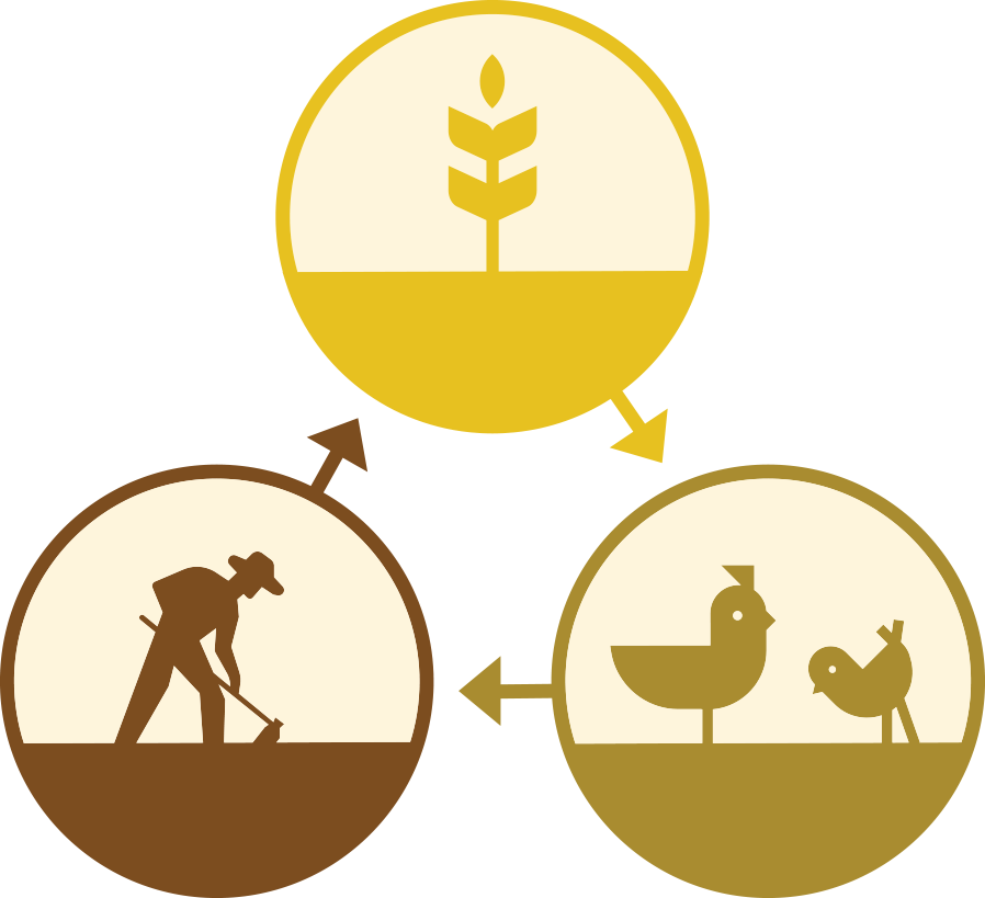 Farm Cycle icon
